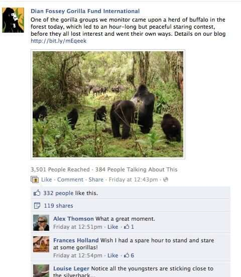 Fossey Fund increases Facebook engagement with photos