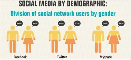 Breakdown of social networks by demographics