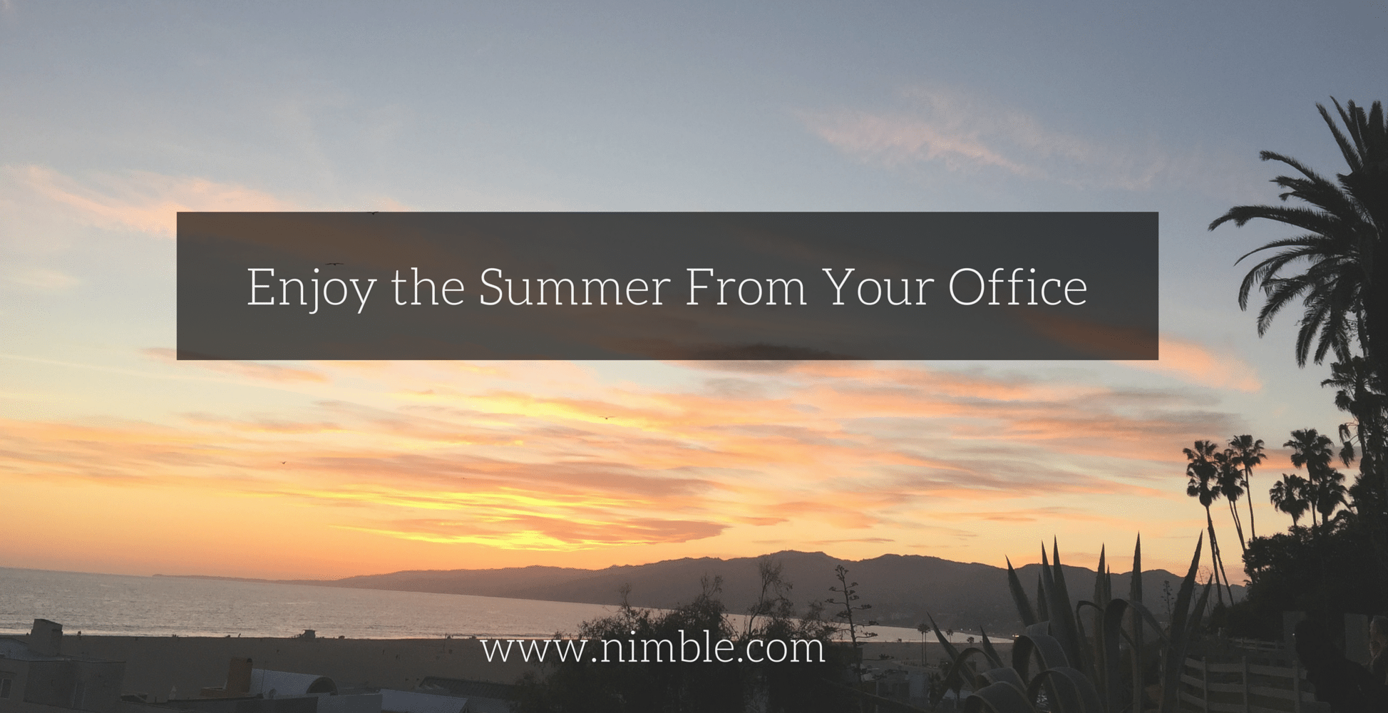 Enjoy the Summer From Your Office