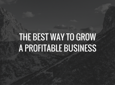 The Best Way To Grow A Profitable Business