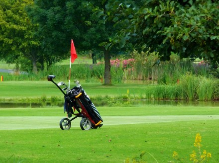 How to Employ a Marketing Caddie to Crush the Competition